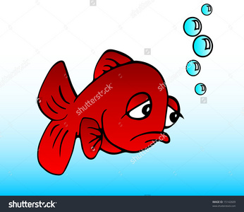 Ok, fine. Friends for me are like fish. toi have them for a divisé, split second, then they dissapear into the water to never come near toi again, if toi catch any at all.