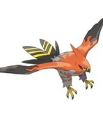 Speaking of birds, meet Talonflame!