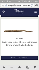 "I'm a Ravenclaw paired with a Larch Wood 11"" with a Phoenix Feather Core and Quite Bendy flexibility"