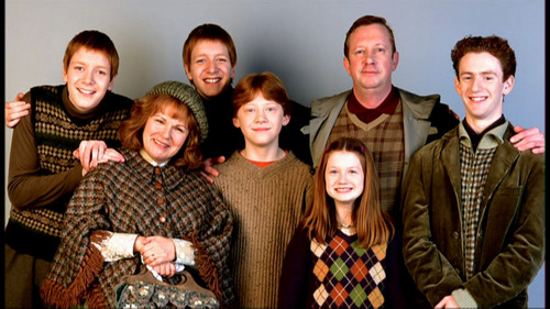 Why do many Fans hate the Weasleys? - Harry Potter Answers - Fanpop