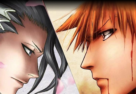 I have 2 but I personally like one a bit lebih then the others. Ichigo and Byakuya. But I prefer Ichigo more, he is willing to save his friends and isn't that bad looking. Byakuya is badass too.