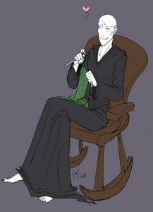 I'm pretty sure that at nigth, after all siku killing people and having dark meetings planning his revenge with Harry Potter, he just like to sit in his bedroom and knit some green scarfs. The picture prooves it, it seems legit