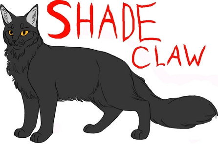 I would be Shadekit/paw/claw/star and I would be in Thunderclan until I'm a warrior which then I would re-create Bloodclan. I would be a Dark Gray Tom with yellow Eyes and I'd be a follower of Scourge from Bloodclan