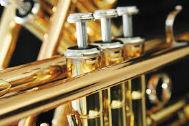 If I could play anything, Im supposing you are excluding that I can already play the trumpet If so, then Ill play the violin If not then Ill stick with the trumpet. Im not leaving my babies.