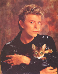 Dave with a kitty <333333