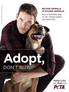 Kellan doing something good,for animals.He is an animal lover and is involved with several charities,including PETA.This is a photoshoot from a few years ago,getting the word out to adopt a pet NOT buy one