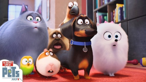 The Secret Life of Pets was just plain awful and 《冰雪奇缘》 was extremely underwhelming (although Frozen's not the worst movie ever - the gorgeous 动画片 prevents that from being true).