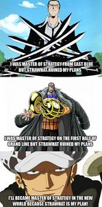 Trafalgar Water D. Law from One piece. (the one on the bottom). He चुरा लिया 100 beating दिल and gave it to the marines to become a Shichibukai. Used that शीर्षक to win the trust of the marine even though he was a merciless pirate. Moved to an forbidden island without his crew to start his master plan on revenge. Made Monkey D. Luffy the unstoppable protagonist make an alliance with him. Without their knowledge made them bring him to his nemesis and fought together till they won.