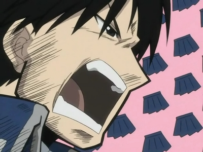 """ALL FEMALE OFFICERS WILL BE REQUIRED TO WEAR....TUNY MINISKIRTS!!!"" - Colenel Roy Mustang, Fullmetal Alchemist"