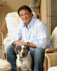 Sylvester who loves animals especially dogs :)