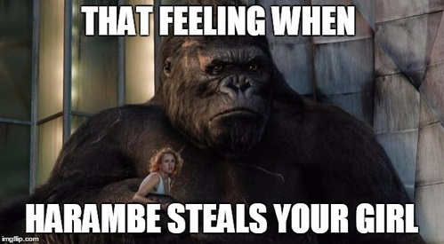 Some of the newer memes. Especially the Harambe memes. Everytime I see a gorilla 또는 a death related video, there's always a dozen of Harambe jokes in the 코멘트 sections.