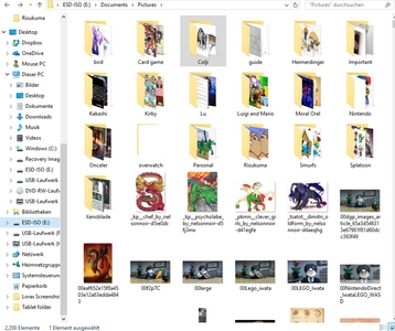 My organization is shit. I really need a Pokemon folder because I am pretty sure half the pics in the image folder is Pokemon.