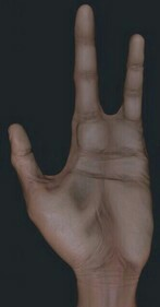Here's an actual image of my hand. Good luck with that.
