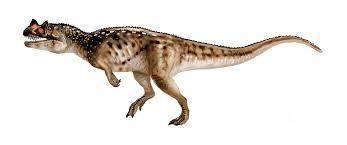 ceratsauras