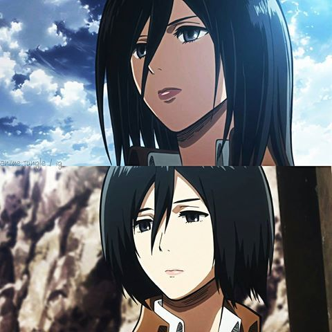Mikasa comes to mind