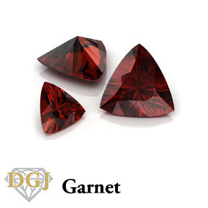 the january birthstone: Garnet even tho its the birthstone of my bday month, i tình yêu it for its color