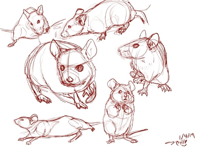 Hmmmmm....sketching mice lol. Idk, this год has been pretty shitty so far. I found some good Lo-fi radios so I guess that is a good thing too.