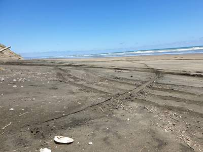 Probably all the trips to the beach. We went to one пляж, пляжный that was an open пляж, пляжный so we drove my brothers truck down it for miles, it just didn't end hahah. It was a scorcher день though