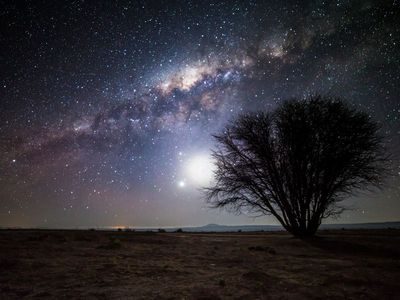 … anda know, I once read an artikel about the Atacama Chilean Desert - the driest place on our planet. They say that the lack of light pollution, water vapour and other things makes the sky one of the clearest, most vivid, most intense ever. I think I'd like stargazing out here....~ https://www.smithsonianmag.com/travel/star-trekking-chile-astronomy-180955798/?no-ist