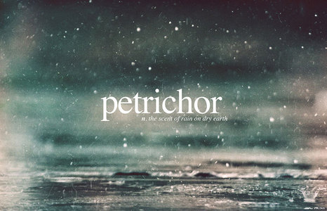 There are quite a few that I have in mind but I think mainly: 1. Petrichor 2. Schokolade 3. Peaches !!!!