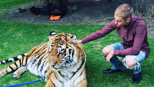 Justin with a real tiger !