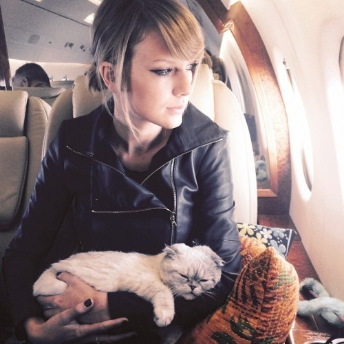 Taylor with her cat in a plane.