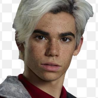 I think Cameron Boyce was the best person ever