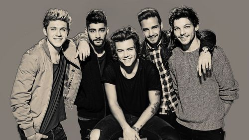 I think that Harry and Niall get their شائقین سے طرف کی being cute and nice. I also think that Zayn and Liam are the hottest. Louis is just in between. No offense!! But they are 1 direction!! EVERYONE IS SO FREAKING CUTE AND HOT!!
