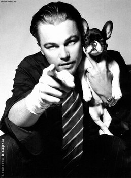 Post your fav actor with pets.