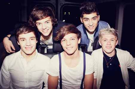 If あなた could meet only ONE member of One Direction which member would あなた want to meet?