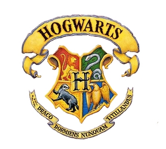 Do tu think there should be a prequel of before harry's time?