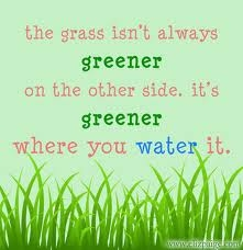 How green is your grass?