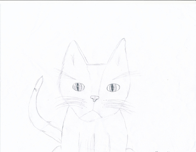 What do te guys and gals think of my drawing of a cat?