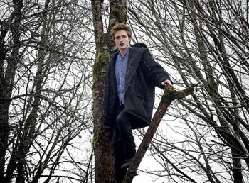 Post a pic of your fave actor up in a tree.Mine is of my gorgeous Robert Pattinson,in a BTS from Twilight<3
