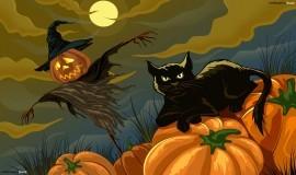 Best films to watch on Halloween?
