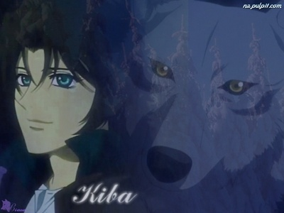 Post a character that has wolf-like features, traits, and characteristics. insgesamt a wolf-like character