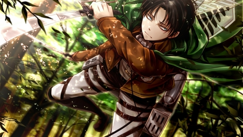 Are Levi and Mikasa related?