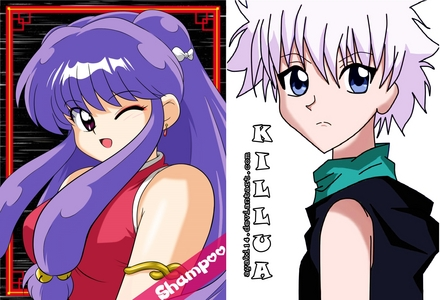 Which Hunter X Hunter Characters have similarities to Ranma 1/2 characters