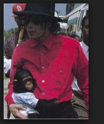why are tu a fan of Michael Jackson