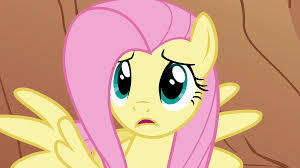 what My little poney character do u think could be Canada? (i think most of u would agree X3)