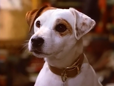 Can people understand Wishbone?