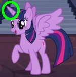 """Do the rings on unicorn pony's indicate how old the unicorn pony's are atau how """"mature"""" the unicorn pony's are ?"""