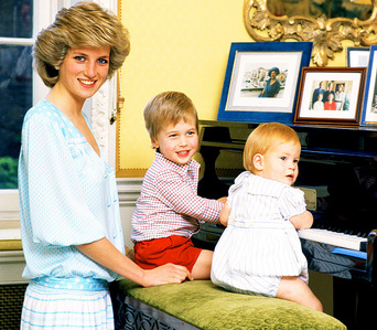 What do 당신 think about the documentary Diana, 7 Days that Princes William and Harry participated in?
