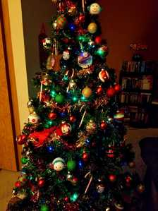 tunjuk me a picture of your Krismas pokok 🎄