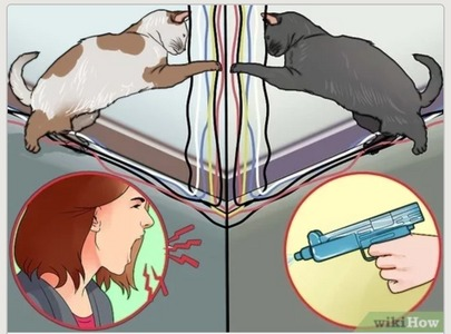 Suggest a Название for this wikihow image