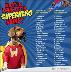 What is your pets superhero Name?