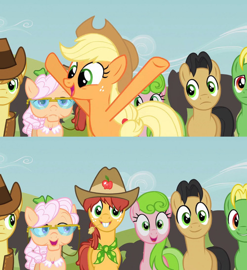 Apple Family Reunion: Raise This Barn - The long awaited Applejack Song