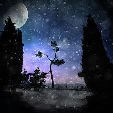 The Night in the snow