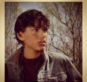 the outsiders johnny cade essays Dallas winston and johnny cade from se hinton's novel the outsiders have a connection deemed unlikely because of their extensive the outsiders essay.