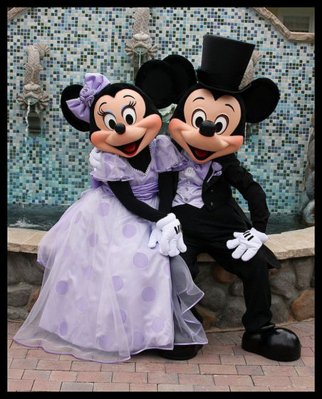 Mickey and Minnie topo, mouse